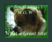 jendi says W.O.W what a great site